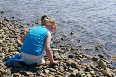 collecting stones