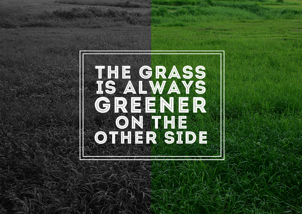 Grass Is Always Greener Quotes: Grass Is Always Greener On The Other Side